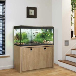 fish tank buying guide aquatics world. Black Bedroom Furniture Sets. Home Design Ideas