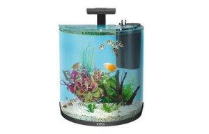 30 Litre Fish Tank