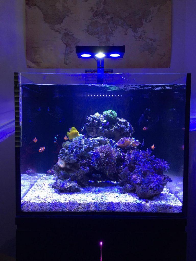 Boyu Aquarium Fish Tank and Cabinet with LED Lighting (123cm / 300L, Black)