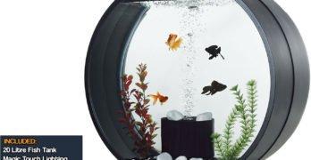 20 Litre Fish Tank