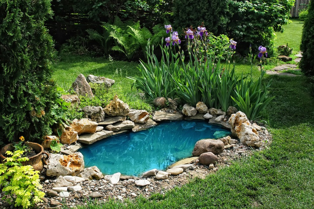 Adding A Pond To Your Garden