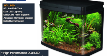 Picking The Best 40 Litre Fish Tank