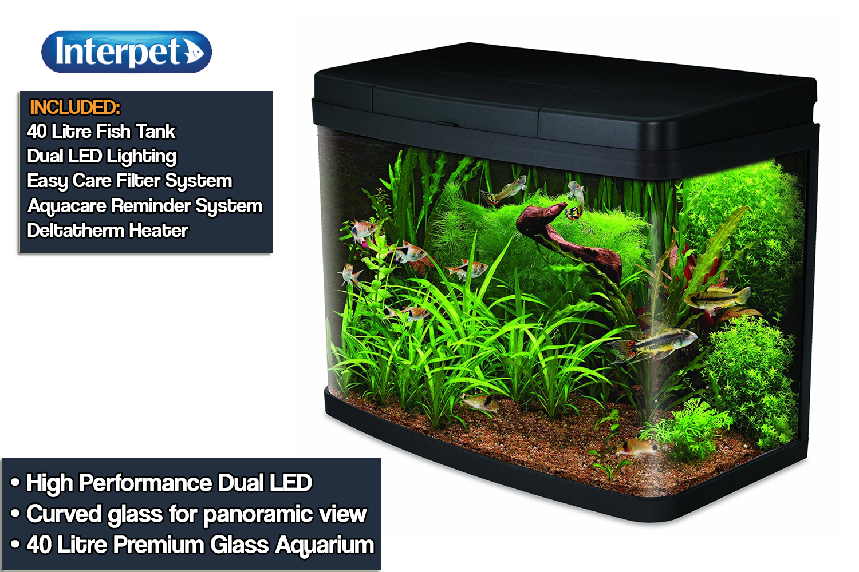 a8d41dde094 What Are The Best 40 Litre Fish Tanks  - Aquatics World
