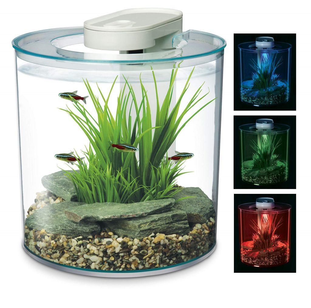 The Marina 360 Fish Tank